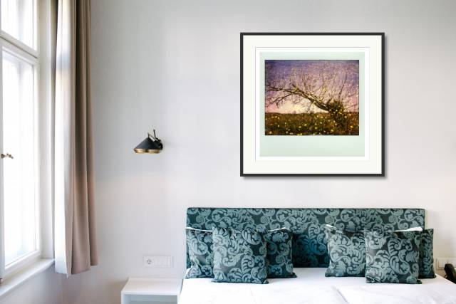 Hippie Tree, Périgord Noir, France - Denis Olivier Photography