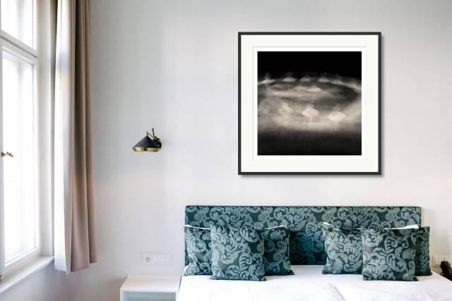 #9, The Swan Lake, Berlin - Denis Olivier Photography